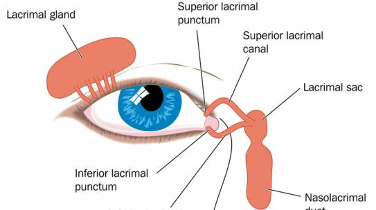 Treatment for blocked tear duct.